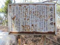 2019.4.5長野県松本市・桜ヶ丘古墳、針塚古墳 - シュタイブ!