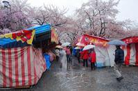 平野神社の桜 - yoshiのGR散歩