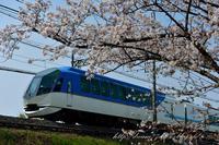 近鉄の桜 - HIROのフォトアルバム