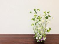 春のお花畑♪ - Flower Days ~yucco*のフラワーレッスン&プリザーブドフラワー~