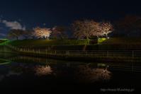 2019年桜風景初撮り - デジタルで見ていた風景