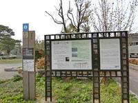 ザビエル公園と阿免寺(あめんじ) - Pilgrim 東西南北巡礼記
