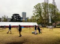 新宿御苑はシンゾウ君の文化・芸能人との「桜を見る会」の準備で大わらわ - 設計事務所 arkilab