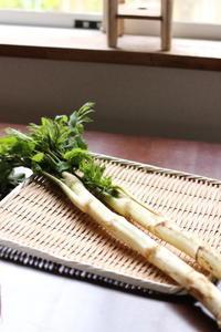 山菜ウドでお台所しごと - キラキラのある日々