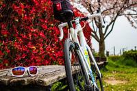 RACING JACKET調整ライド - ゆるゆる自転車日記♪