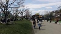 大阪市立美術館 - 雪の朝帰り