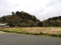 楽しい行事目白押し! - 千葉県いすみ環境と文化のさとセンター