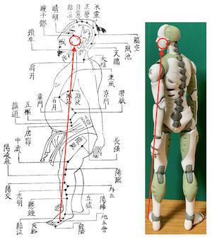 膝関節の不調にお悩みの人も、◯経ラインを整えましょう ?ある日の施術より? - 快風院『均整日記』