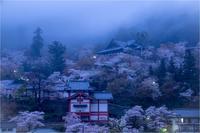 霧の長谷寺 - duke days