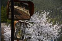 reflection - Noriko's Photo  -light & shadow-