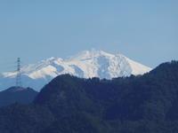 赤ヤシオ咲く納古山 (632.9M)  ピックアップ編 - 風の便り