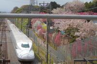 棒 - 新幹線の写真