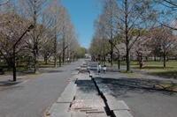 舎人公園 / X30 - minamiazabu de 散歩