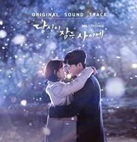 OSTのまとめ~韓国ドラマ「あなたが眠っている間に」~韓コレ2019OSTランキング第5位 - OST評論家 モンタンKOREA