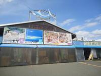 福井県敦賀市「日本海さかな街」で昼食 - 健康で輝いて楽しくⅡ