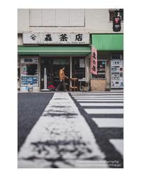 茶の道 - ♉ mototaurus photography