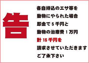 人間不信 4/13 - 綾部ふれあい牧場 日記