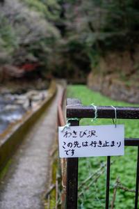 わさび沢 - Azzurro Nuvola