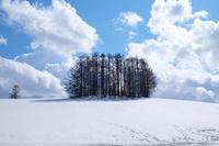マイルドセブンの丘はまだまだ雪景色~4月の美瑛 - My favorite ~Diary 3~