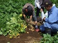 農産物から見た、GAP基準 - すてきな農業のスタイル