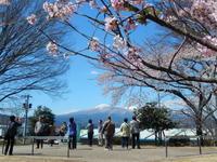 阪急トラピックスで行く三春滝桜と若冲観賞の日帰り旅その2若冲展 - ふつうの生活 ふつうのパラダイス♪
