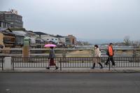 雨傘 - Wayside Photos  ☆道端ふぉと☆