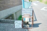 kamakura 24sekki (神奈川県鎌倉市) - Photographie de la couleur