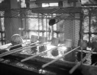 手水鉢に映るモラビアの残照 - Film&Gasoline