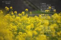 令和の訪れ - Poetry Garden 詩庭