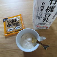 手作り豆乳ヨーグルト - Cherry Creek                                                 ~ちくちく手芸部!ときどきファーム~