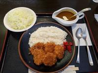 さんかさんで、ひれかつカレー(とんかつ さんか:札幌市白石区南郷通7南6) - eihoのブログ2