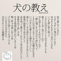 犬の教え - Let's get started