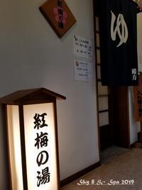 ◆ 車旅で広島へ、その9「湯原温泉 湯の蔵 つるや」へ 温泉編(2019年3月) - 空と 8 と温泉と