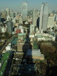 東京そぞろ歩き・1月の東京:東京タワー(その2) - 日本庭園的生活