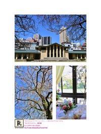 桜が舞う中、新しい方達もお迎えして、今期も春らしいスタートとなりました!「亮子さんのフラワーレッスン」 - Bouquets_ryoko