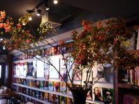 今週のWORLD BOOK CAFEさんは「タナシツツジ」。2019/04/14。 - 札幌 花屋 meLL flowers