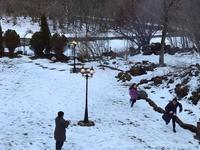 雪合戦を楽しむ孫達 - その日・その日