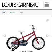 ゴールデンウィークにルイガノの自転車で - 滝川自転車店