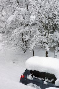 4月11日の大雪 - 標高480mの窓からⅡ