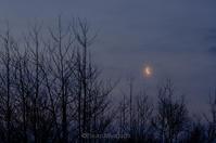 夜明けの細い月 - ekkoの --- four seasons --- 北海道