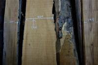 チーク木取り・製材 - SOLiD「無垢材セレクトカタログ」/ 材木店・製材所 新発田屋(シバタヤ)