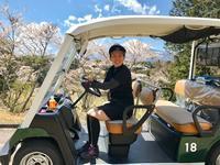 満開の桜咲くゴルフ場で - パームツリー越しにgood morning        アロマであなたの今に寄り添うブログ