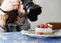 ニコン Z7 vs ソニー α7RIII 重量対決 そしてミゾタユキさんとケーキα7RIII + SEL55F18Z 作例 - 東京女子フォトレッスンサロン『ラ・フォト自由が丘』-カメラとレンズとテーブルフォトと-