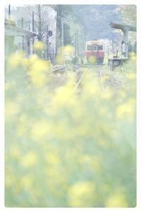 小湊鉄道 - とまれみよⅡ