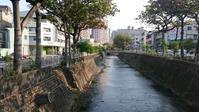 台中の朝の風景 - Tea's room  あっと Japan