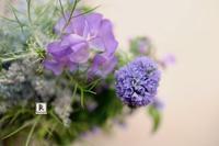 ちいさなお花もぜんぶさきました✨ - Bouquets_ryoko