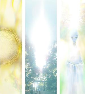 シリウスシップ特別企画新しい時代の幕開けを感じる~シリウス参拝~ -
