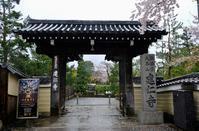 京都の旅 '19 その2 - 原宿 表参道 小さな美容室 アロココ