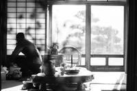 梅の頃。 - Yuruyuru Photograph