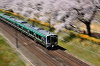 みちのく桜と電車2 - みちのくの大自然